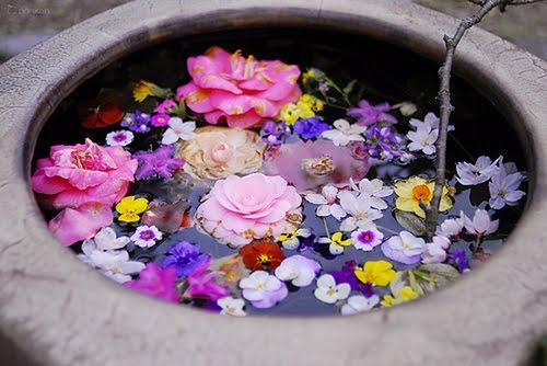 blommor i en skål