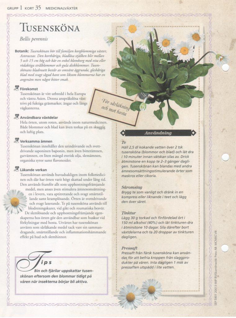 Tusensköna medicinalväxt