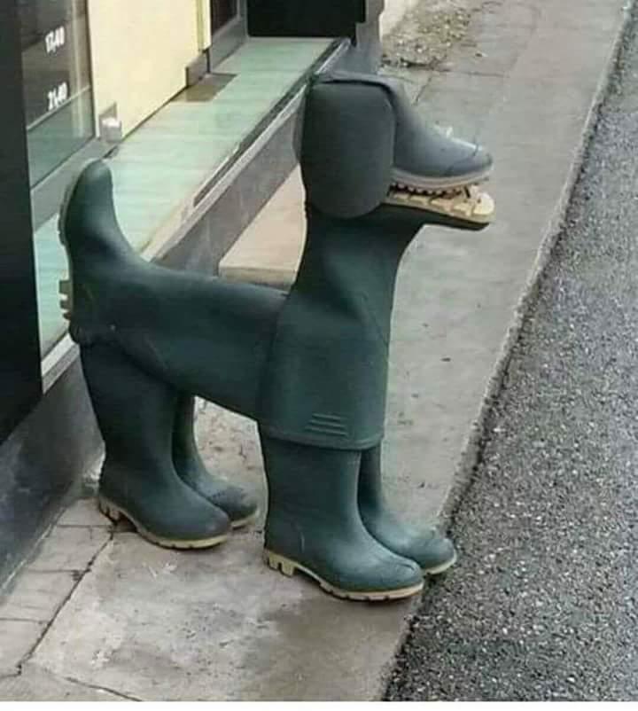 Hund gjord av stövlar