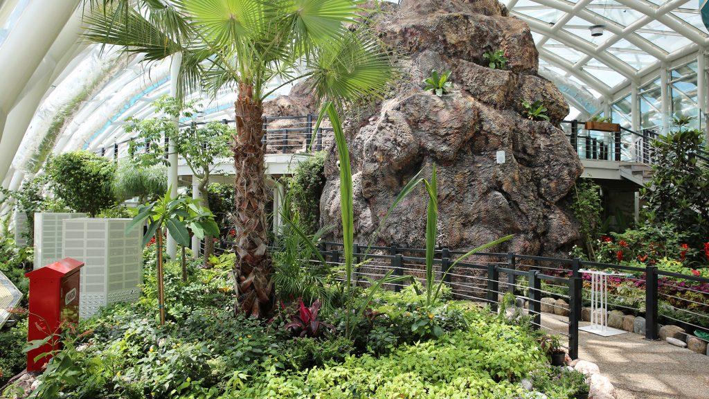 Bo i ett växthus