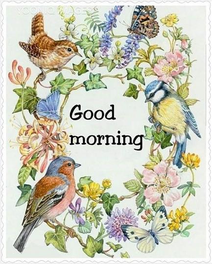 God morgon! Önskar alla en trevlig onsdag :)