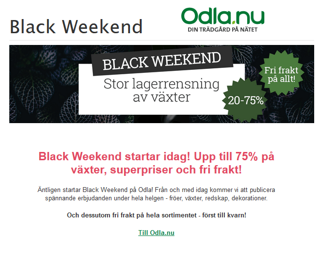 Fynda lökar på Black Week