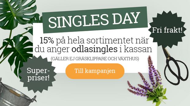 Passa på att skicka en hälsning fraktfritt och 15 % till midnatt på Singles day