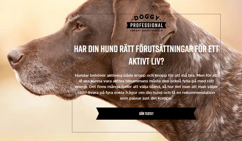 Få 20 kr rabattkupong på Doggy hundfoder