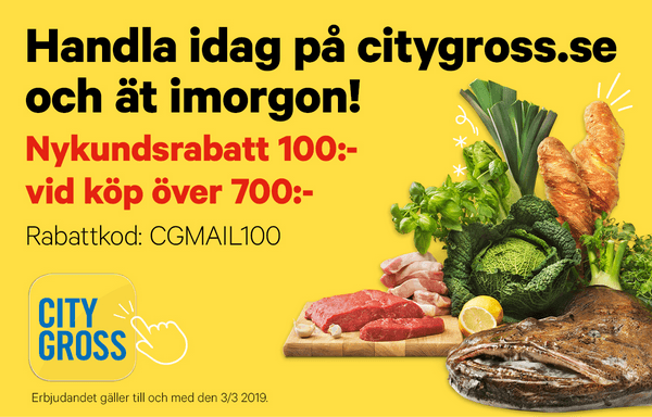 100 kr rabatt på City Gross.se