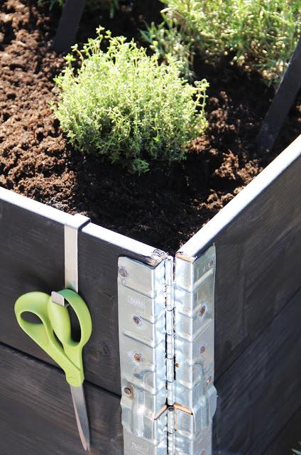Smarta trädgårdshacks