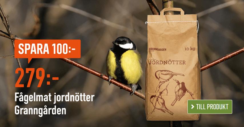 100 kr rabatt fågelmat jordnötter