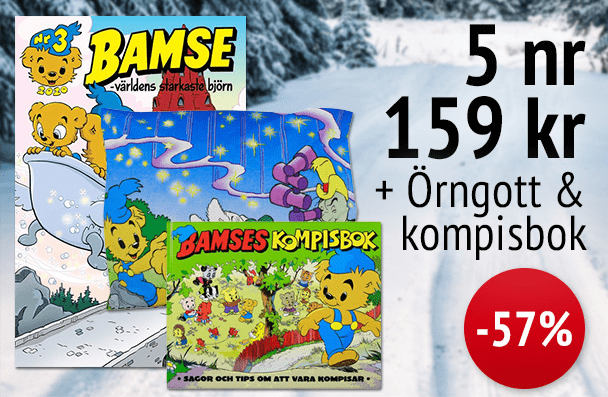 5 nr Bamse + örngott & kompisbok