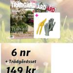 11 st finfina klätterväxter