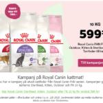 Rabatt på Royal canin torrfoder