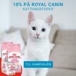 10% rabatt på Royal Canin kattungefoder
